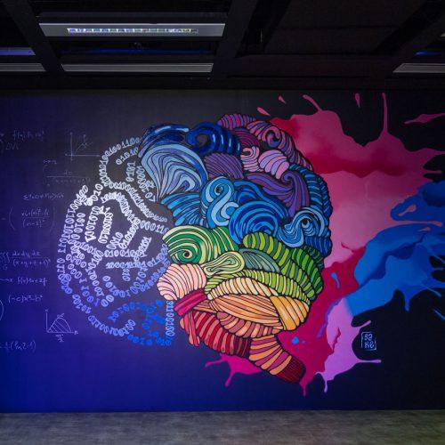 Mitos y ciencia alrededor del cerebro de los programadores